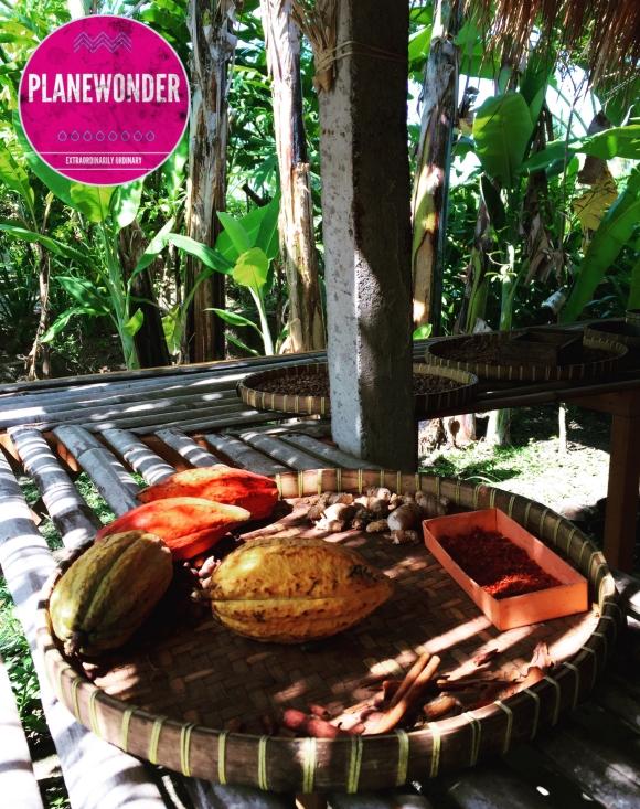 Planewonder-Bali (5)